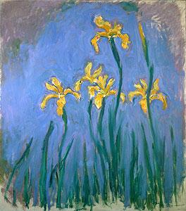 Gelbe Iris - Claude Monet