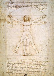 da Vinci, Leonardo - Proportionsschema nach Vitruv - Vitruvian Man) - Leonardo da Vin