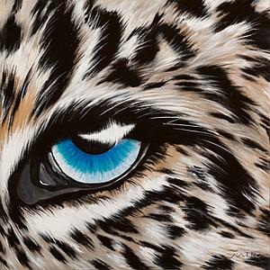 Tiere - Leopardenauge - Jutta Plath