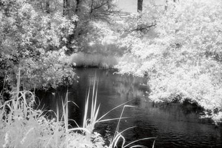 Landschaften - Flusslauf - Martin Steiner
