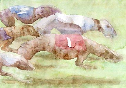 Hunderennen - Barnim Millarg