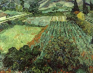 Feld mit Mohnblumen - Vincent van Gogh